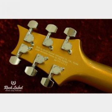 Paul martin Reed martin guitar case Smith(PRS) acoustic guitar martin SE martin strings acoustic Custom martin guitar strings acoustic medium 24 - Gold Metallic guitar FROM JAPAN/512